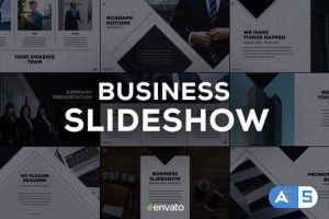 Videohive Business Slides 23431687