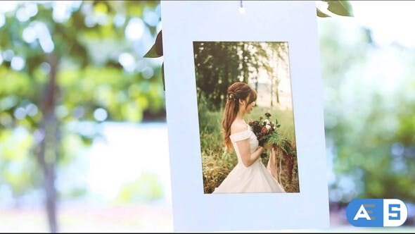 Videohive Photo Gallery Under Tree 31647671
