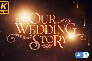 Videohive Wedding Memories 31834551