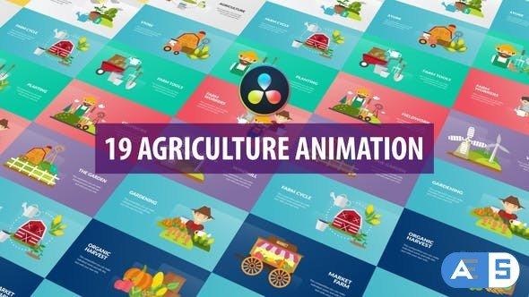 Videohive – Agriculture Animation | DaVinci Resolve – 32589197