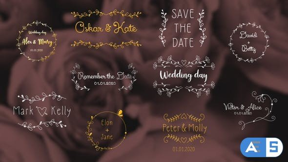 Videohive Wedding Day Titles | After Effects 33468015